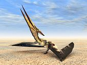 stock photo of pteranodon  - Computer generated 3D illustration with the Pterosaur Pteranodon - JPG
