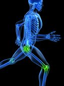 pic of joint inflammation  - 3d rendered illustration of a running skeleton with highlighted joints - JPG