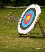 foto of archery  - Archery target in the nature with archery arrows - JPG