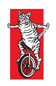 picture of unicycle  - Vector illustration of a cat riding a unicycle - JPG