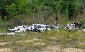 image of illegal  - Illegal garbage dump in the woods in central Florida - JPG