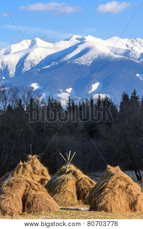 haystack's on mountain meadow in Slovakia