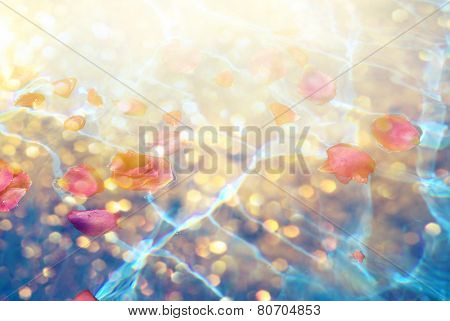 Flower petals with dew in blue water