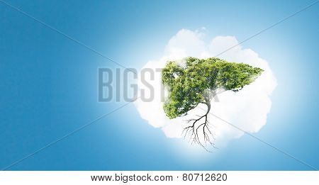 Conceptual image of green tree shaped like human liver