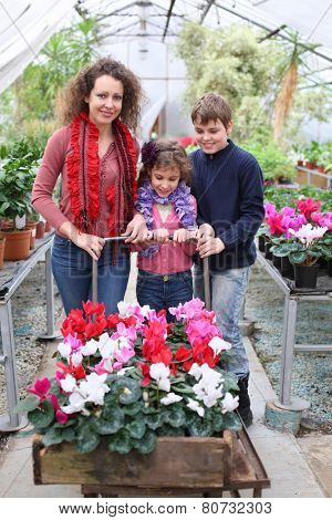 Mother with daughter and son driven cart with beauty flower in the greenhouse
