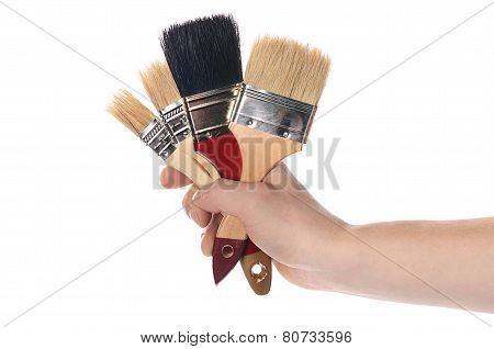 Whitewashing Brush In A Man's Hand