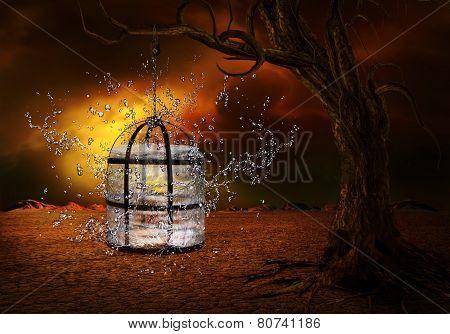 Water Captivity