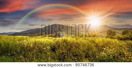 Meadow With Flowers In Mountains At Sunset