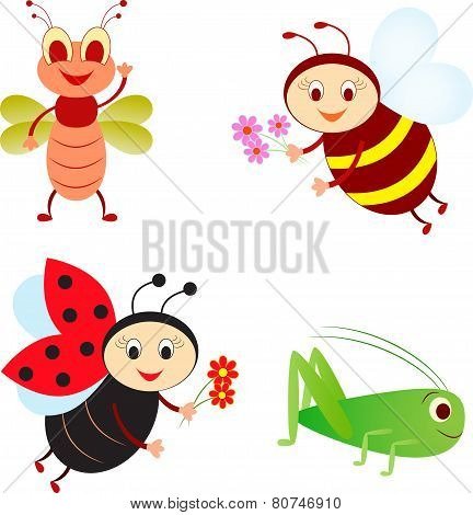 Cartoon Insects, Ladybug , Bee, Fly, Grasshopper Vectors