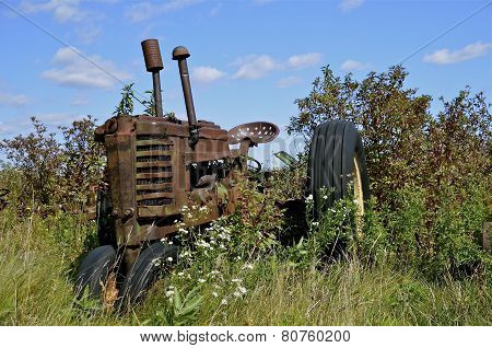 Old tractor in the brush