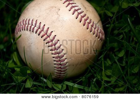 Old Baseball In The Grass