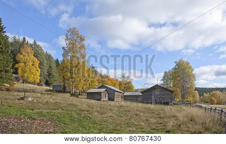 Autumn, fall in the rural countryside.