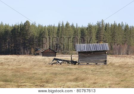 View of wooden barns at a marshland area in autumn, fall.