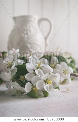 Still life of apple blossom flowers with jug in background