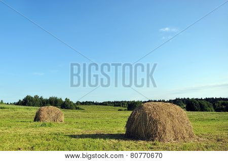 Haystack On Meadow
