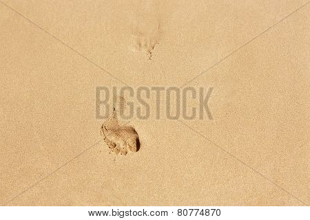 Human footsteps on yellow beach sand