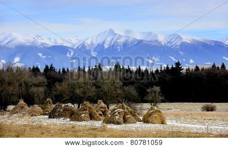 haystack's on Tatra mountains background, take in Slovakia