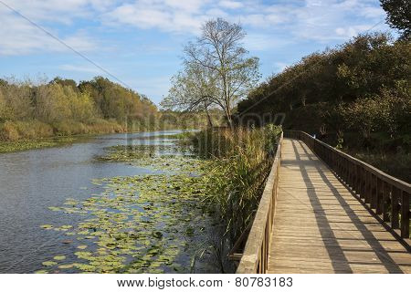 Acarlar Swamp Trail