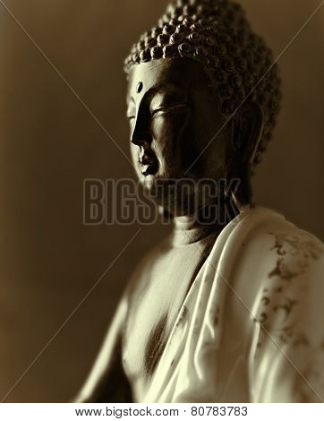 Buddha Statue (close up)