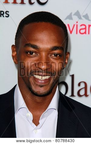 LOS ANGELES - JAN 20:  Anthony Mackie at the