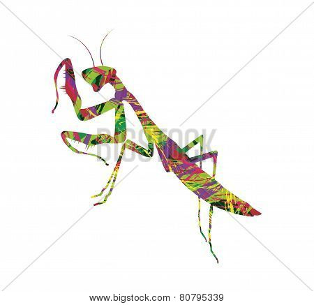 abstract silhouette of praying mantis