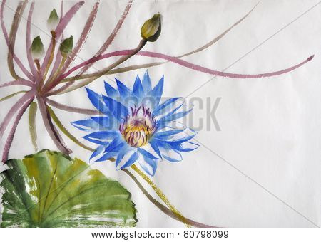 Nymphaea Flower Watercolor Painting
