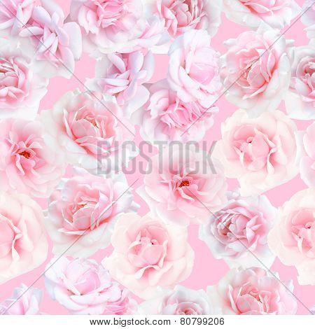Pink roses seamless pattern