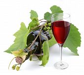 image of wine-glass  - Bottle of wine in the vine on a white background - JPG