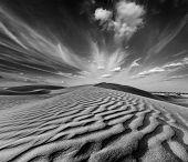 pic of dune  - Dunes of Thar Desert - JPG