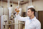 pic of beaker  - Focused brewer examining beaker with beer in the factory - JPG