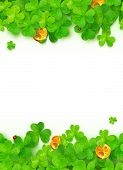 foto of triskele  - Green vector clovers with golden coins on white background - JPG