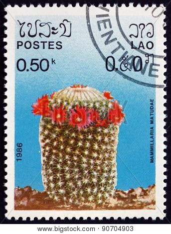 Postage Stamp Laos 1986 Pincushion Cactus