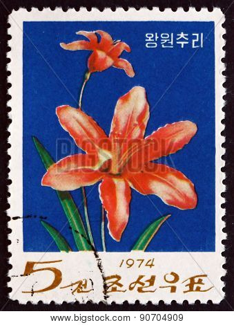 Postage Stamp North Korea 1974 Day Lily, Flowering Plant
