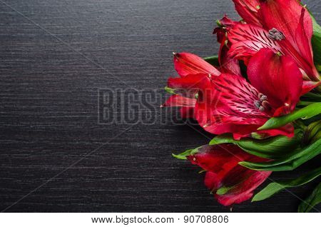 beautiful Red Alstroemeria flowers on black wooden table
