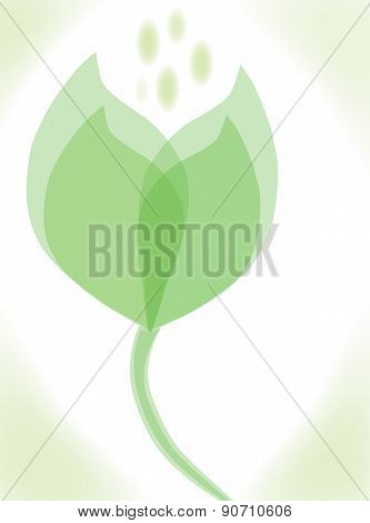 Green leaves concept