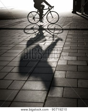 Back Lit Cyclist In Evening Light