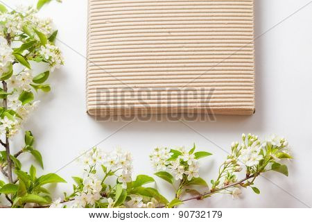 beautiful flowers cherry on branches with striped box on a white background