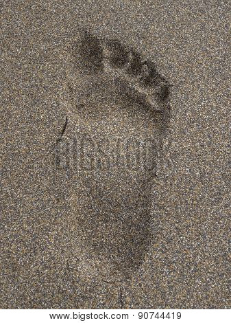Footprint Upon Beach