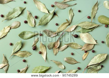 Bay Leaves (laurus Nobilis)
