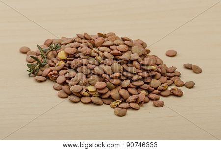 Dry Lentil