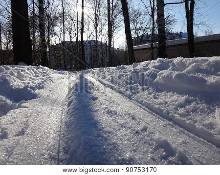 Winter road in the park wiht snow