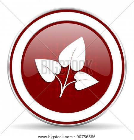 leaf red glossy web icon
