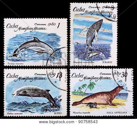 Post Stamp. Sea Animals. Cuba