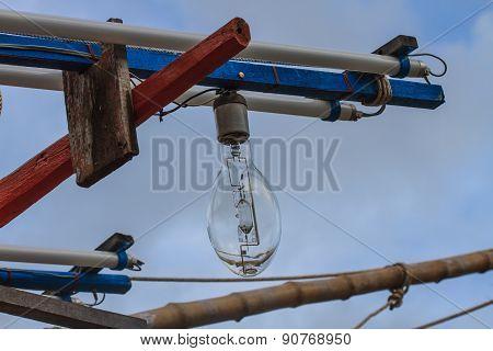 Squid fishing boat light bulb
