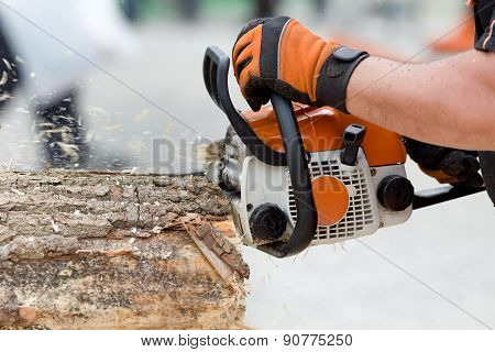 Chainsaw Cutting Wood