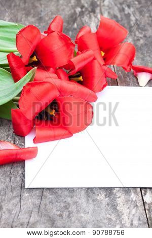Faded Red Tulips On The Oak Brown Table With White Sheet Of Paper