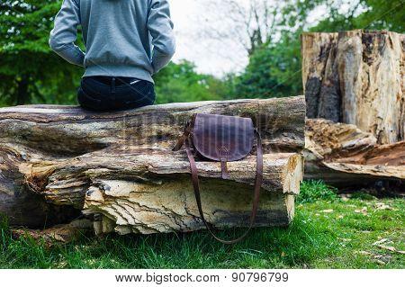 Woman Sitting On Tree Trunk With A Handbag