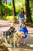 foto of little sister  - little girl in blue jacket stroking sled dogs - JPG