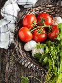 pic of cilantro  - Fresh Tomatoes - JPG