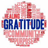 foto of gratitude  - Gratitude word cloud on a white background - JPG